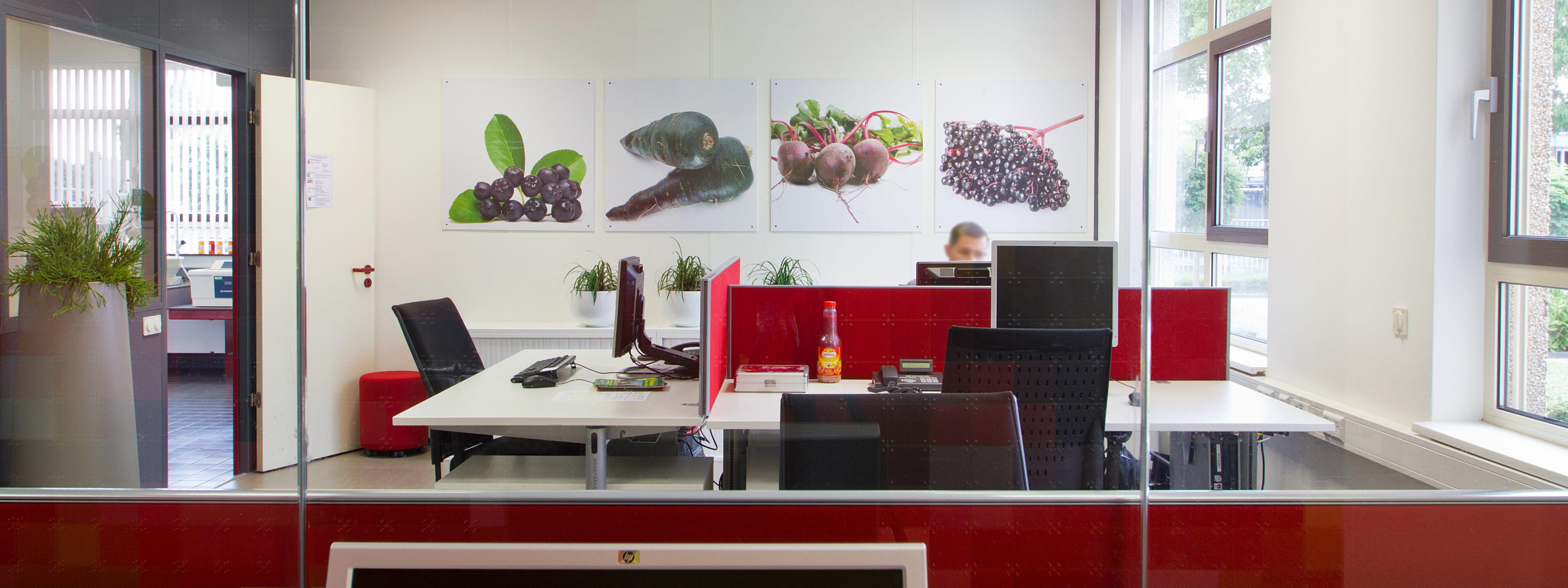2012_08_24 - Topperprojecten SVZ (113)PANHR
